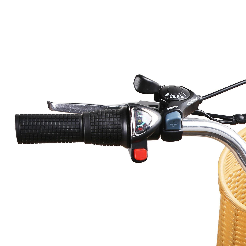 NAKTO Electric Bike 250W Motor E-Bike Li-Battery 6 Speed