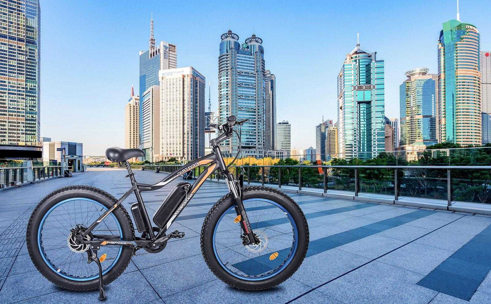 ECOTRIC City Electric eBike Pedal Speed
